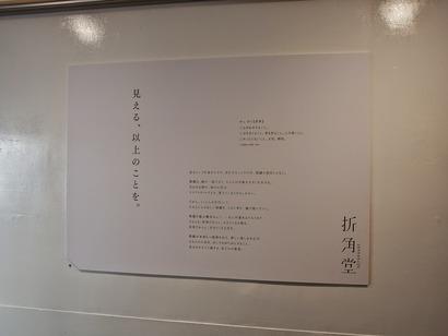 P4181234