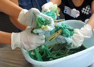 神戸産 藍の生葉でハンカチを染めよう